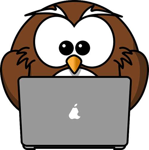 owl on computer